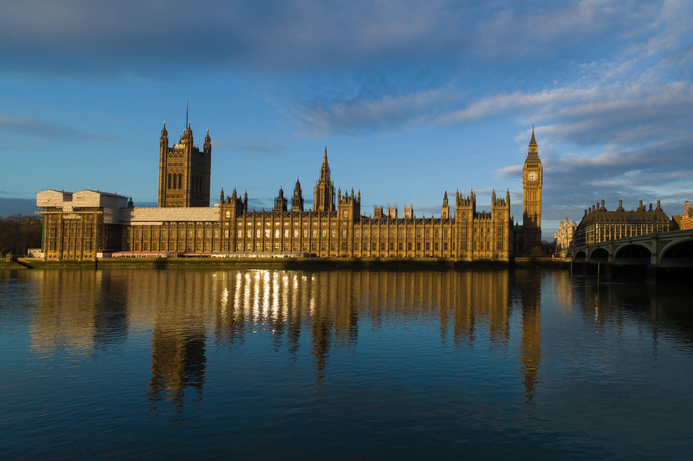 Employment proposals general election