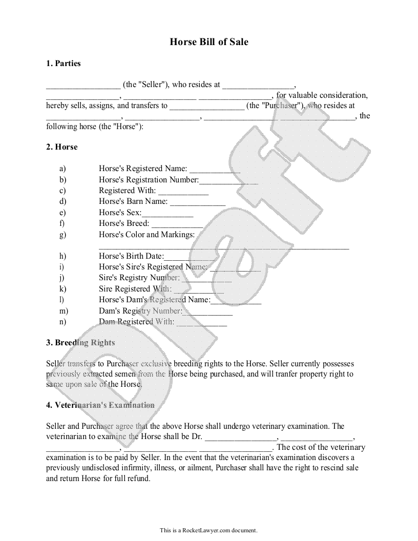 Sample Horse Bill of Sale Form Template