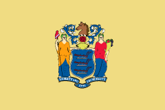 /refresh_assets/img/fillingMap/flag-new-jersey.png